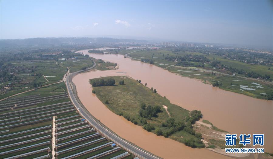 黄河畔的粮、菜、花之变